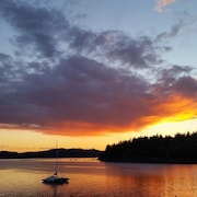 Castaway Cove Cabin - Dog Lovers Welcome - Mgr. Abigail's Concierge Services