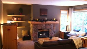 TV, fireplace, DVD player, books