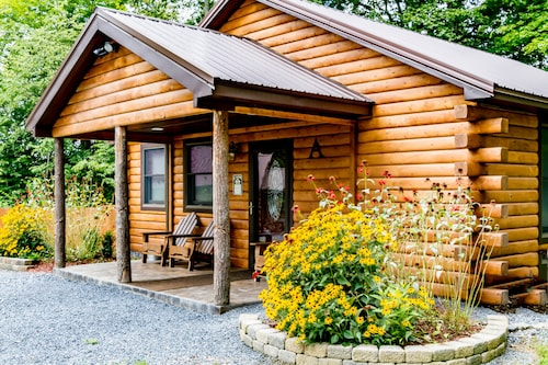 Rustic Log Cabin Retreat, Cayuga Wine Trail, Dogs Welcome, Open Year-round