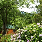 Mountain Getaway For Couples! 17 Miles to Asheville, Pet Friendly, Hot Tub