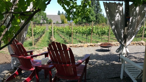 Free Nites @ Cozy Farmhouse on Private Vineyard,bikes,donkey,wine,robes,by Plaza