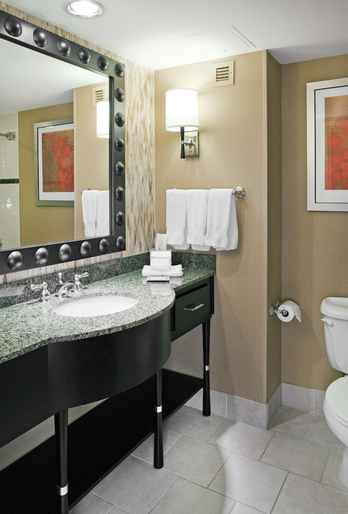 Bathroom, Hilton Omaha