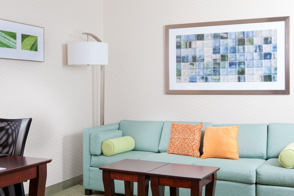Living Area, SpringHill Suites by Marriott Norfolk Virginia Beach