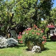 Puutarha