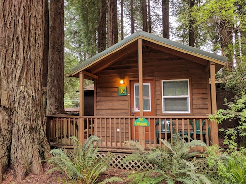 Emerald Forest Cabins