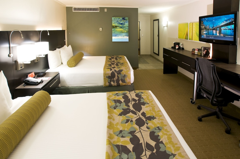 Room, Oasis Hotel & Conv. Center, Ascend Hotel Collection