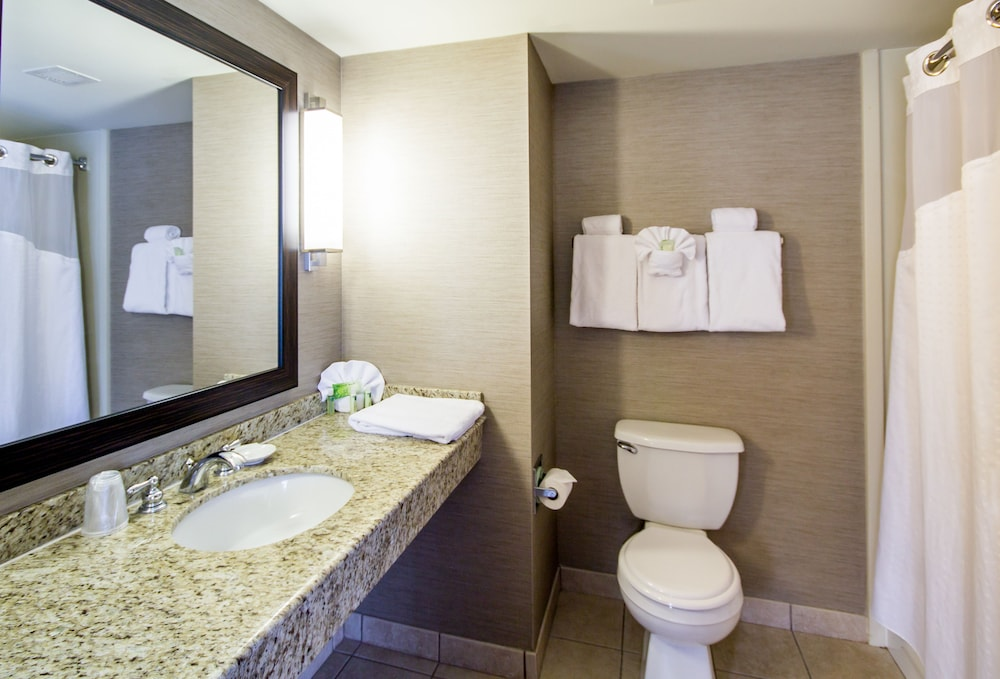 Bathroom, Holiday Inn Express Hotel & Suites Auburn, an IHG Hotel