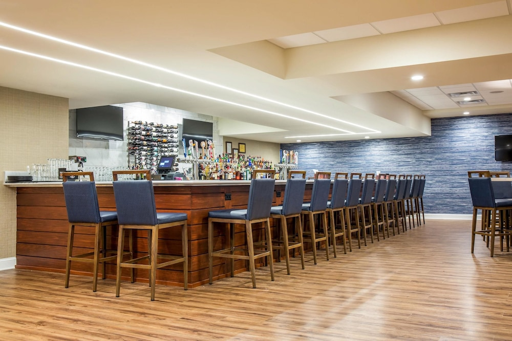 Bar, Wyndham Newport Hotel
