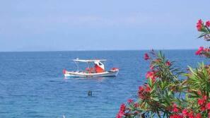 Serviettes de plage, plongée sous-marine, ski nautique, planche à voile