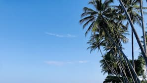 Ubicación a pie de playa, toallas de playa y masajes en la playa