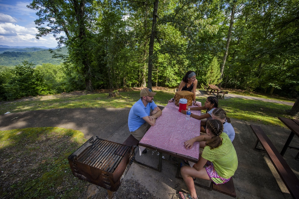 BBQ/Picnic Area, Pine Mountain State Resort Park
