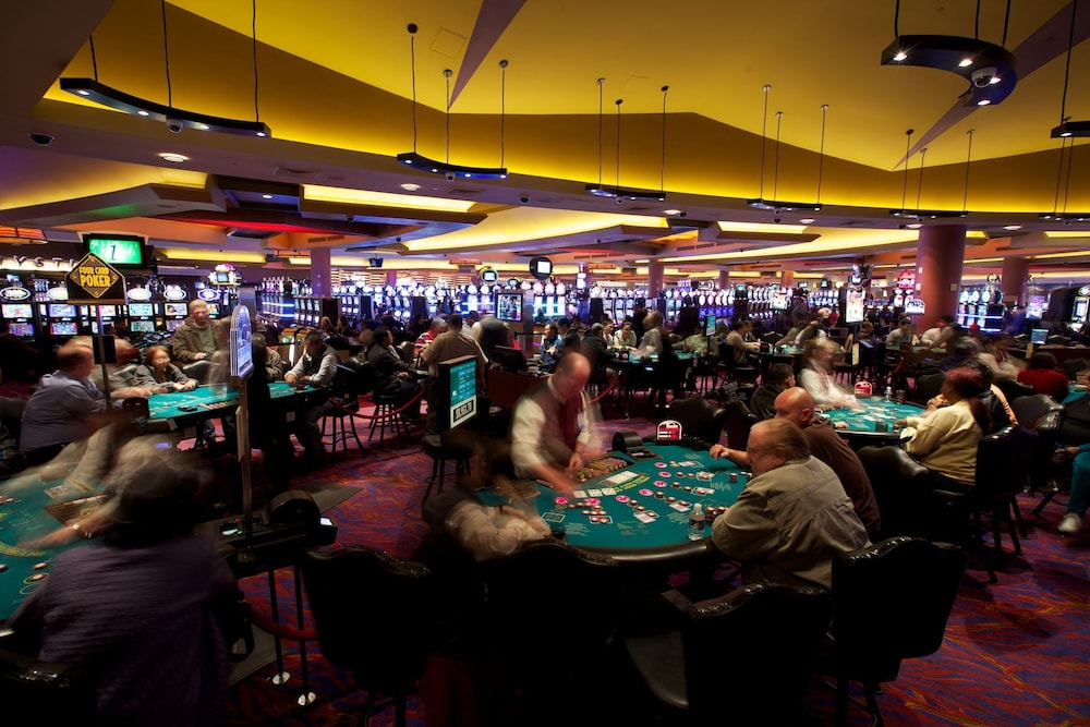 scheck casino