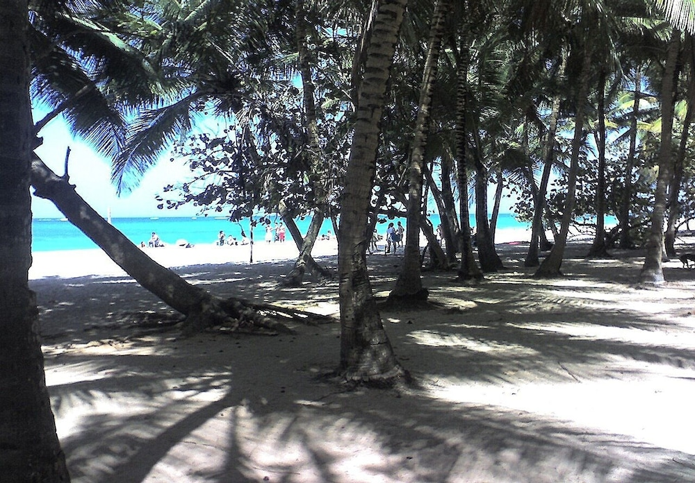 Beach, Acacia Boutique Hotel