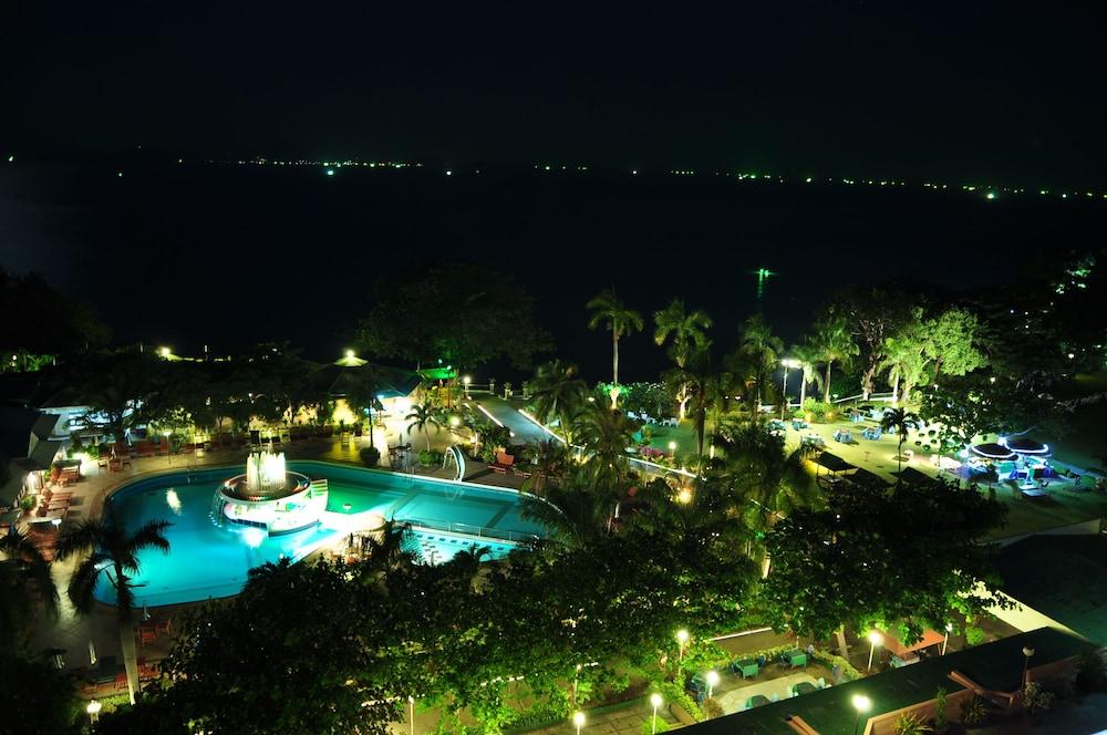 таиланд паттайя отель азия фото дерево, древо жизни