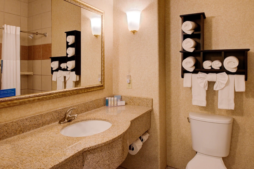 Bathroom, Hampton Inn & Suites Ontario