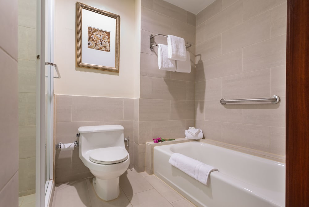Bathroom Shower, Courtyard by Marriott Panama Multiplaza Mall