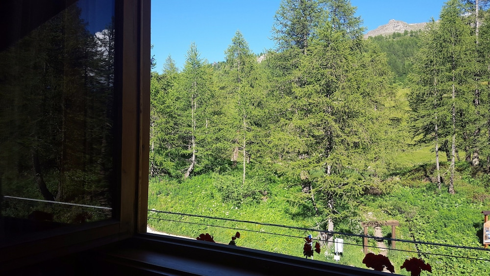 View from Room, Hotel Chalet Valdotain