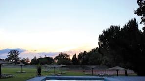 Seasonal outdoor pool, open 7 AM to 8 PM, pool umbrellas