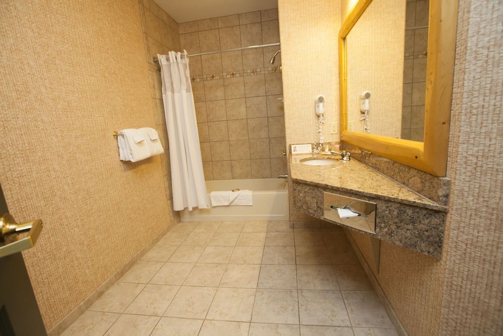 Bathroom, Great Wolf Lodge Wisconsin Dells