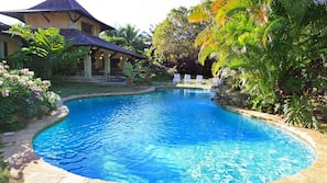 Outdoor pool, a natural pool, sun loungers
