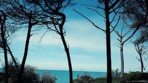 Privat strand, sort sand, solsenger og strandhåndklær