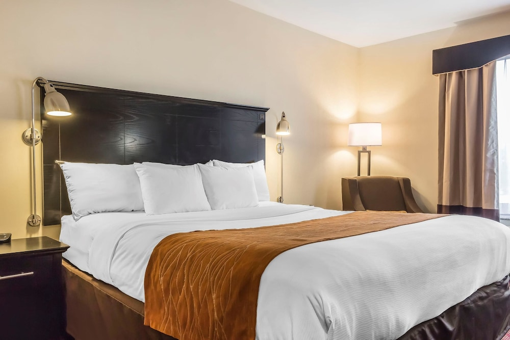 Room, Comfort Inn & Suites LaGuardia Airport
