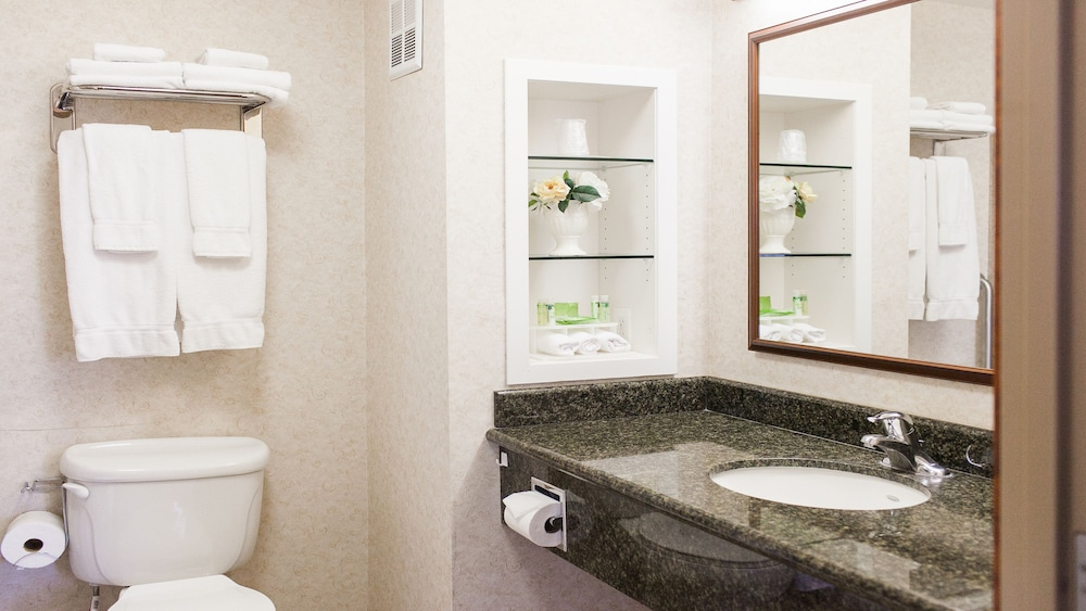 Bathroom, Holiday Inn Express and Suites Turlock