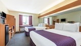 Microtel Inn & Suites by Wyndham Auburn - Auburn Hotels