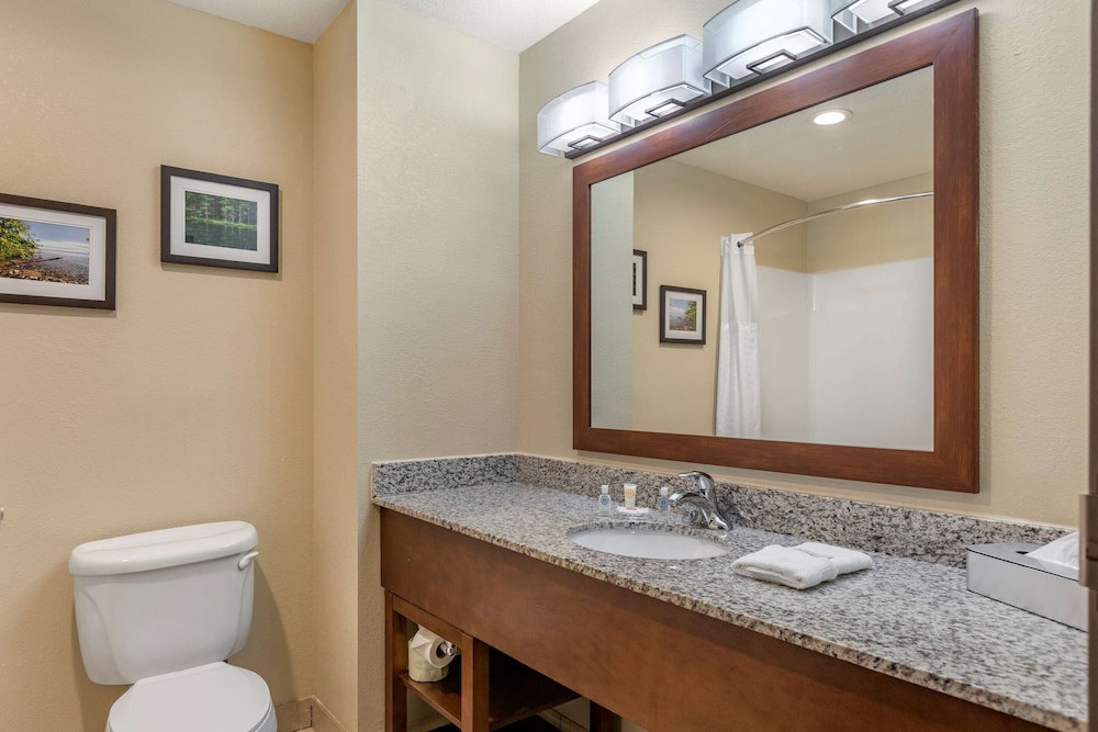 Bathroom, Comfort Suites Grand Rapids North
