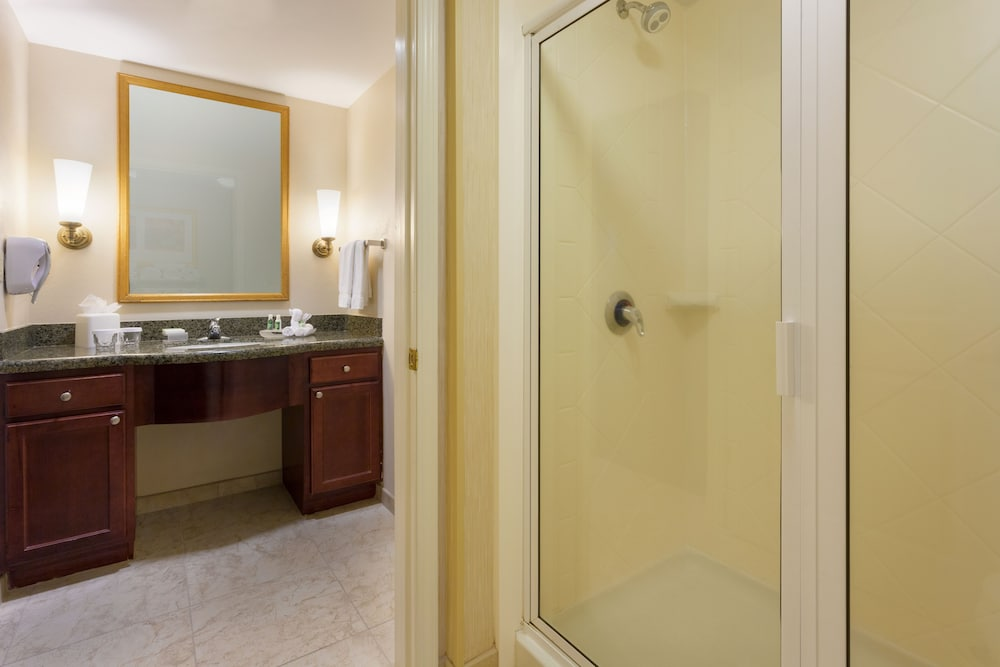 Bathroom, Homewood Suites by Hilton Gainesville