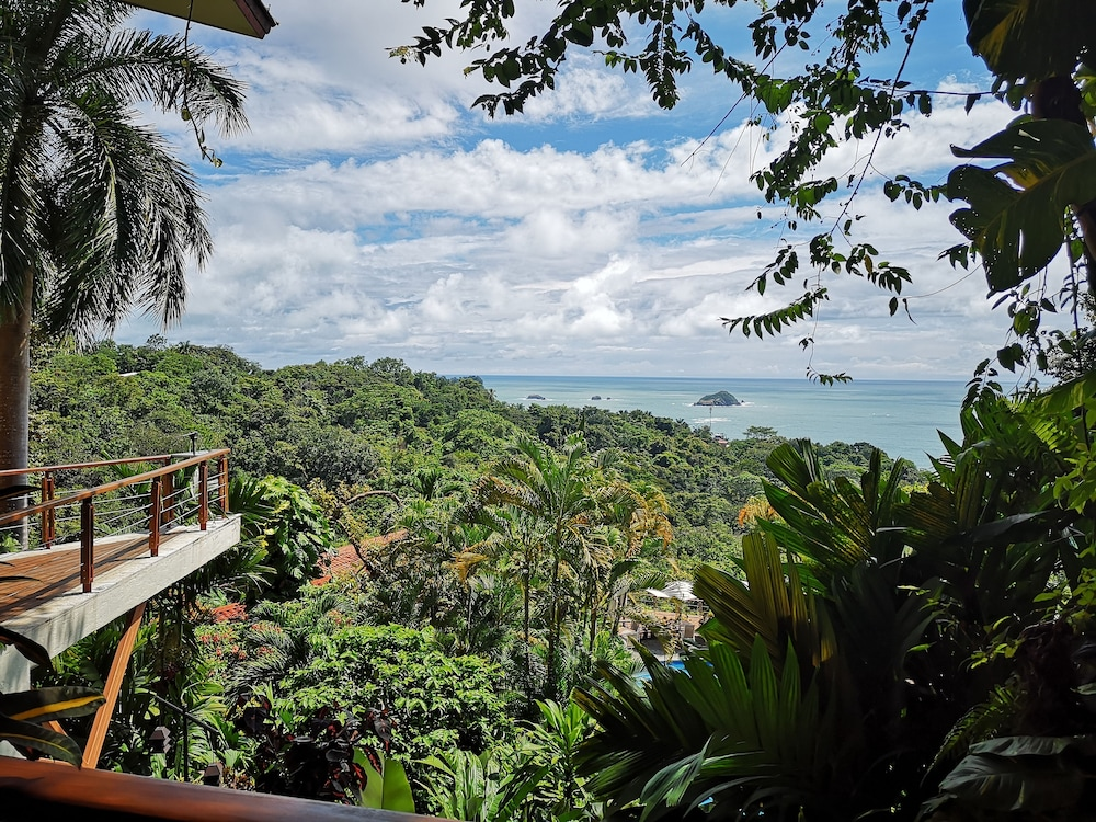 View from Property, Si Como No Resort, Spa and Wildlife Refuge
