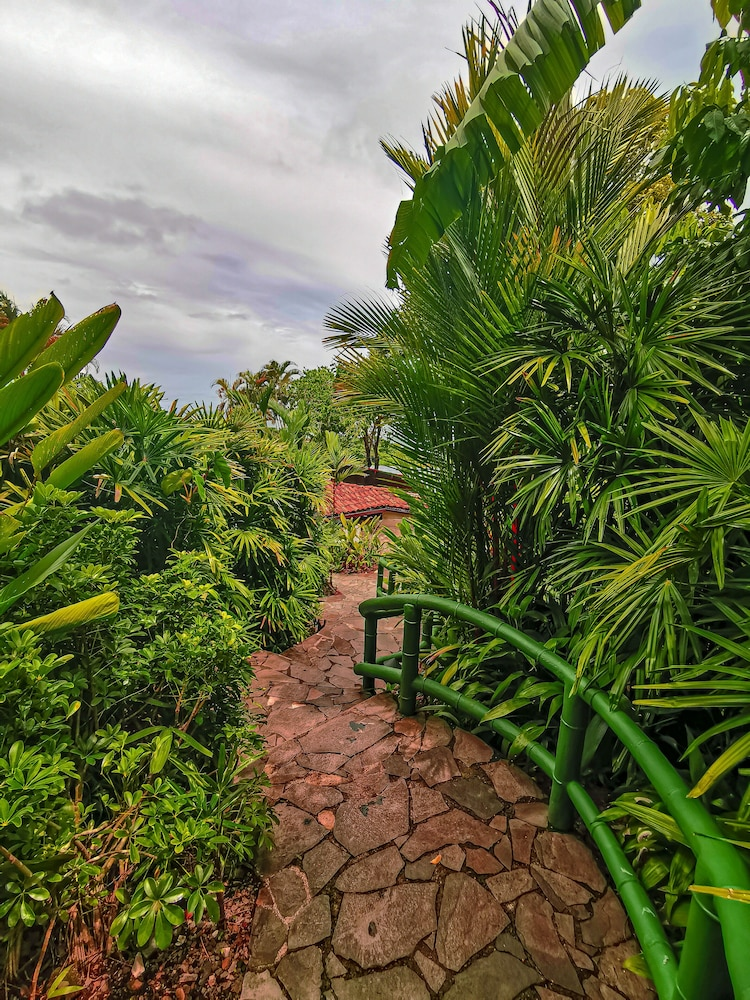 Garden, Si Como No Resort, Spa and Wildlife Refuge