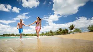 On the beach, beach volleyball, beach bar, kayaking