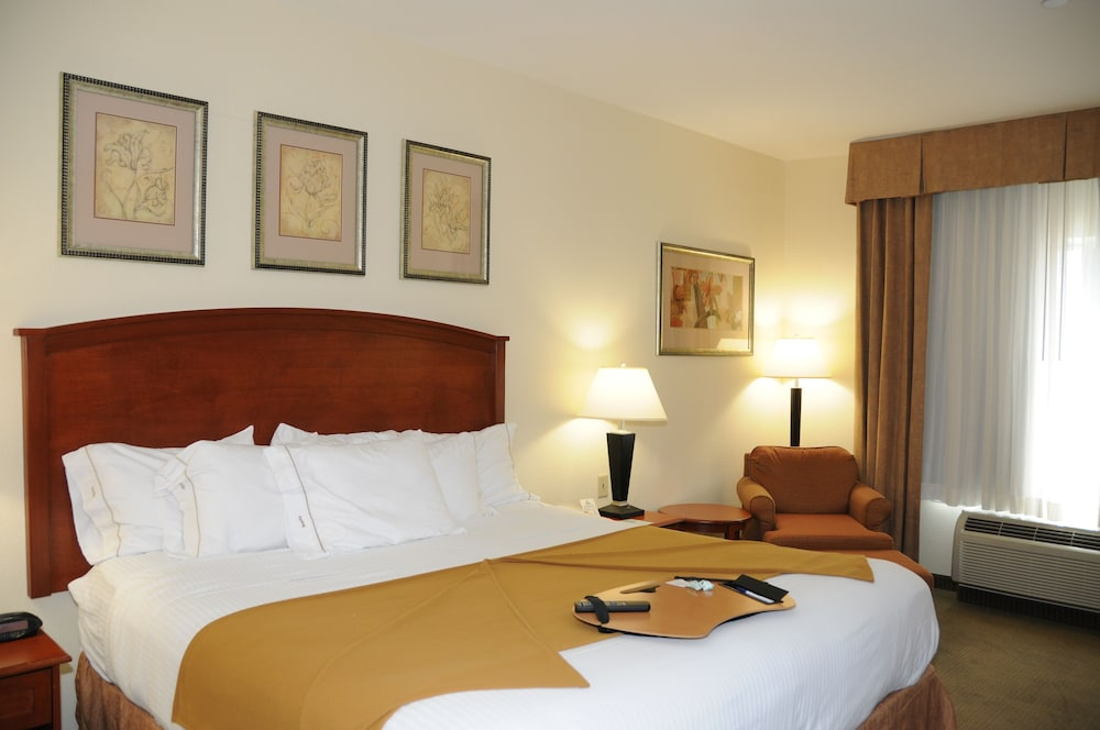 Room, Holiday Inn Express Hotel & Suites Dallas-Grand Prairie I-20