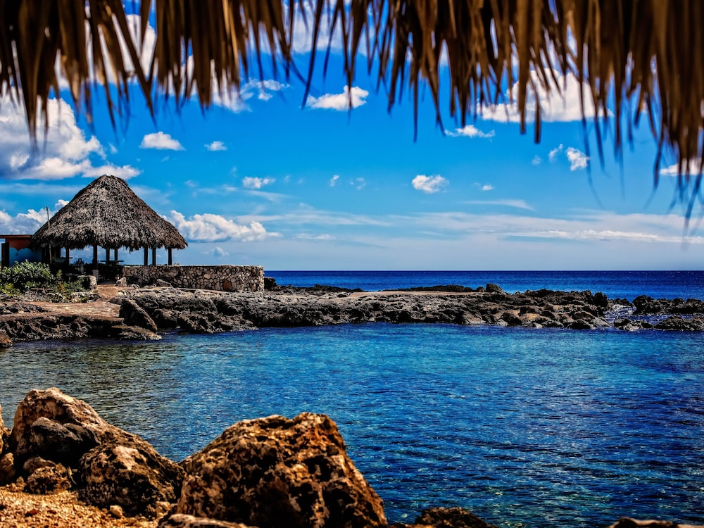 Coral Cove Resort Spa In Negril Hotel Rates Reviews On