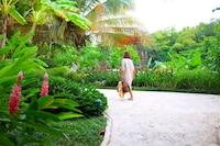 Casa Colonial Beach & Spa (4 of 109)