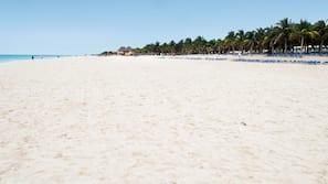 해변에 위치, 백사장, 일광욕 의자, 비치 타월