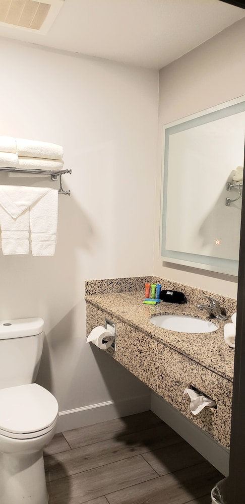 Bathroom, Lakeshore Hotel and Suites