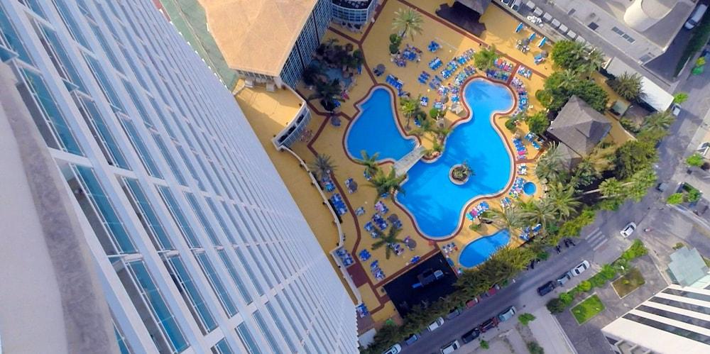 Hotel Flamingo Oasis Reviews Photos Rates