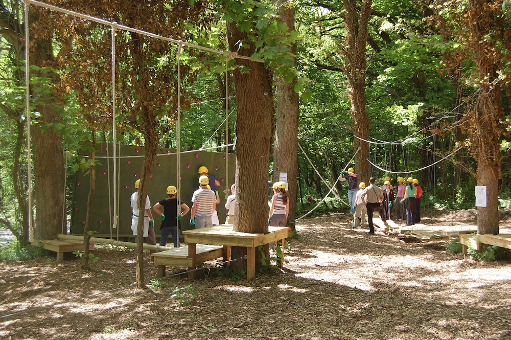 Ropes Course (Team Building), Carton House a Fairmont Managed Hotel (Opening Spring 2021)
