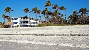 Private beach, sun loungers, beach towels, kayaking
