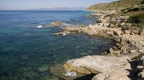 Servicio gratuito de transporte a la playa