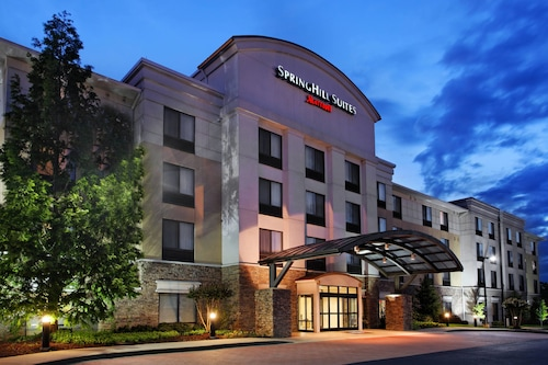 SpringHill Suites by Marriott Knoxville at Turkey Creek