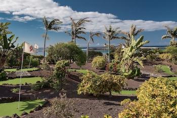 Avenida de las Marismas 1, Caleta de Fuste, Fuerteventura, 35610, Canary Islands.