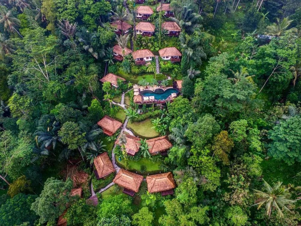 Nandini Jungle Resort Spa Bali In Payangan Hotel Rates Reviews On Orbitz
