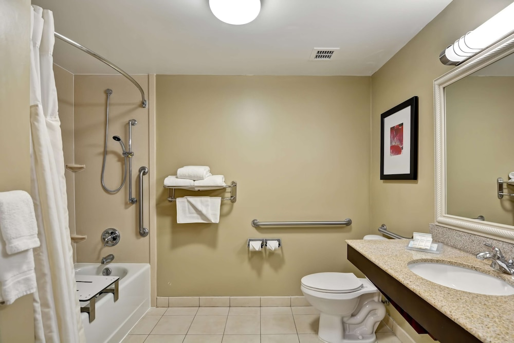 Bathroom, Hilton Garden Inn Tampa Northwest/Oldsmar