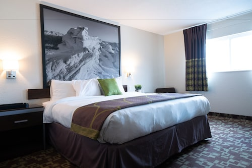 Check Expedia for Availability of 402 Hotel