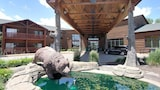 Grizzly Jack's Grand Bear Resort - Oglesby Hotels