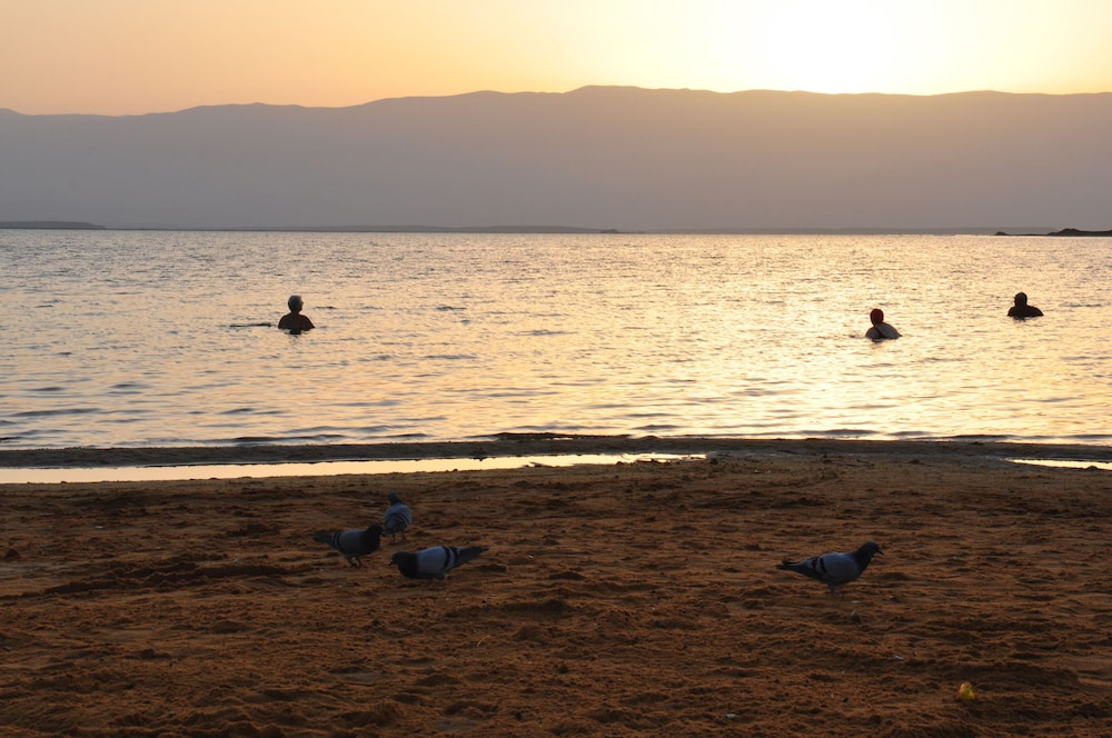 Beach, Isrotel Dead Sea