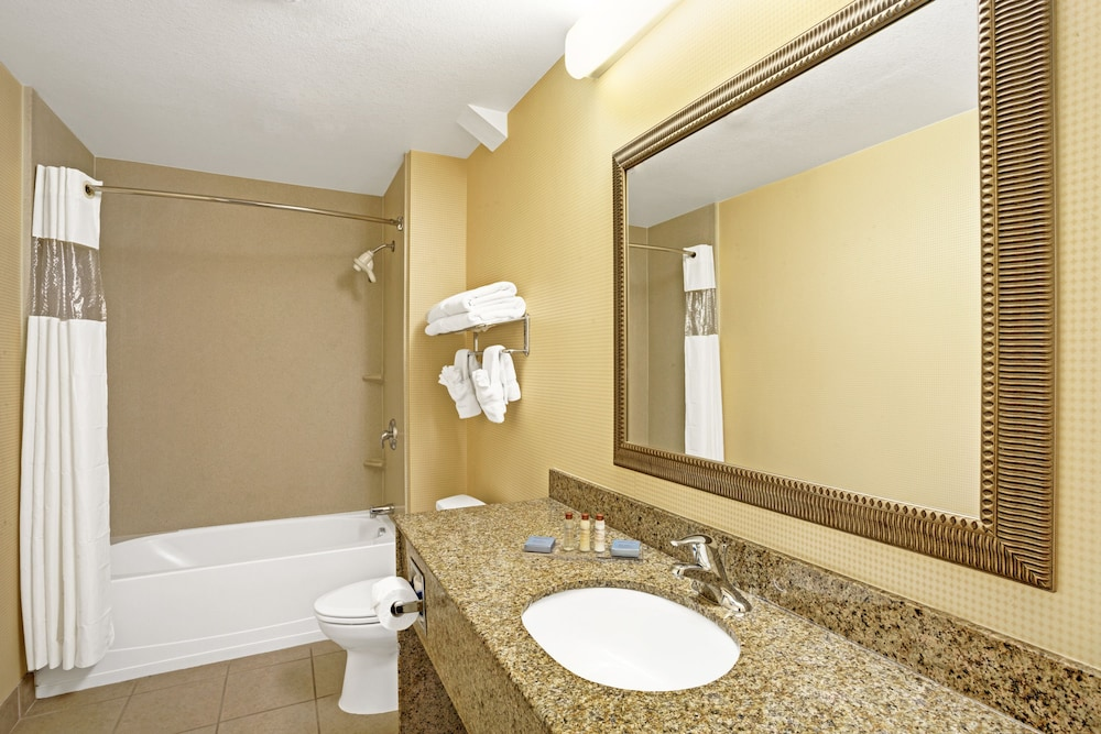 Bathroom, Wingate by Wyndham Atlanta Airport Fairburn